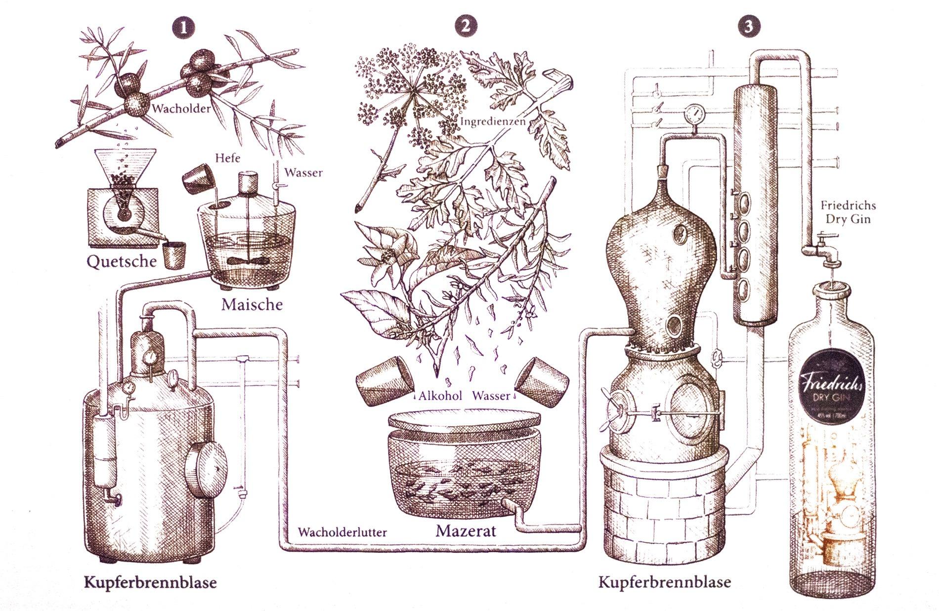 Friedrichs dry gin kupferstich